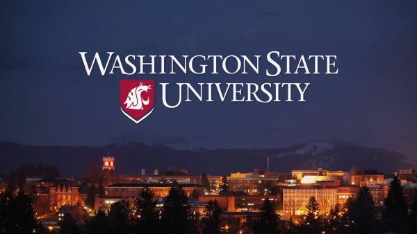 Washington State University Scholarships