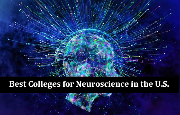 Best Colleges for Neuroscience in the U.S.