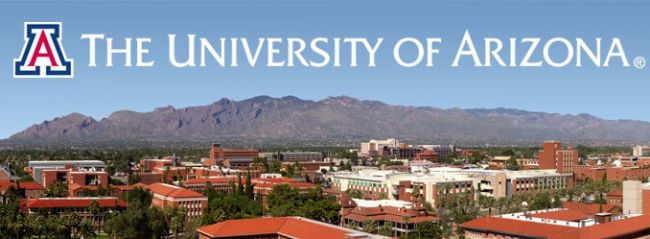 Best Colleges to Study in Arizona