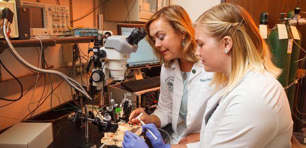 Top Neuroscience PhD Programs Worldwide