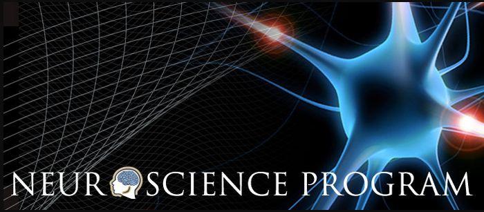 Top-Ranked Undergraduate Neuroscience Programs
