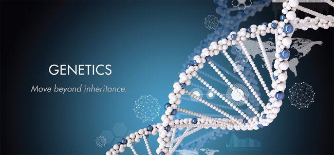 Best Colleges for Genetics