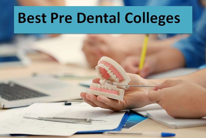 Best Pre Dental Colleges 2018-2019