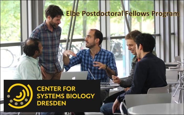 Elbe Postdoctoral Fellows Program