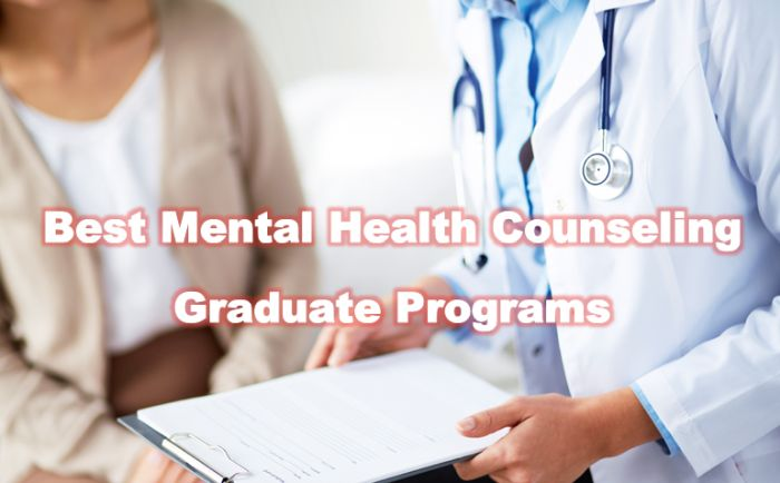 Top Mental Health Counseling Graduate Programs