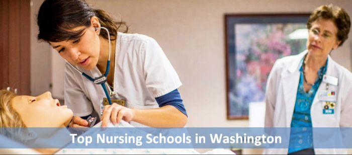Top Nursing Schools in Washington 2018-19