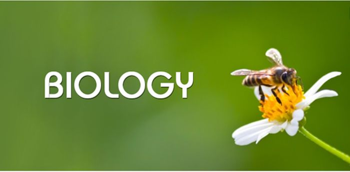 Best Biology Colleges in Massachusetts