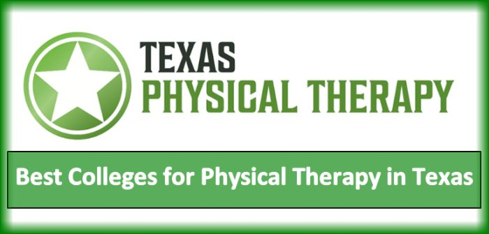 Best Colleges for Physical Therapy in Texas