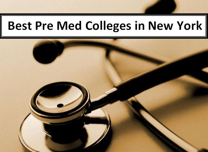 Best Pre Med Colleges in New York