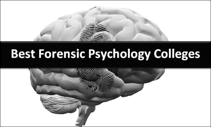 Best Forensic Psychology Colleges