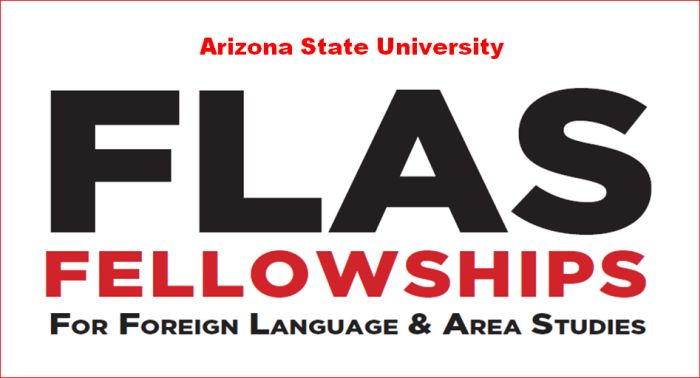 Foreign Language and Area Studies Fellowship