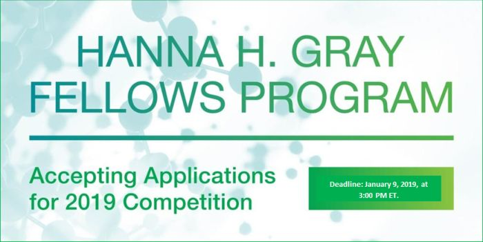 Hanna H. Gray Fellows Program