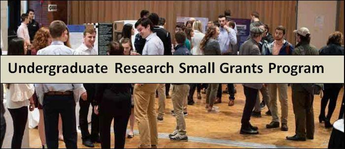Undergraduate Research Small Grants Program