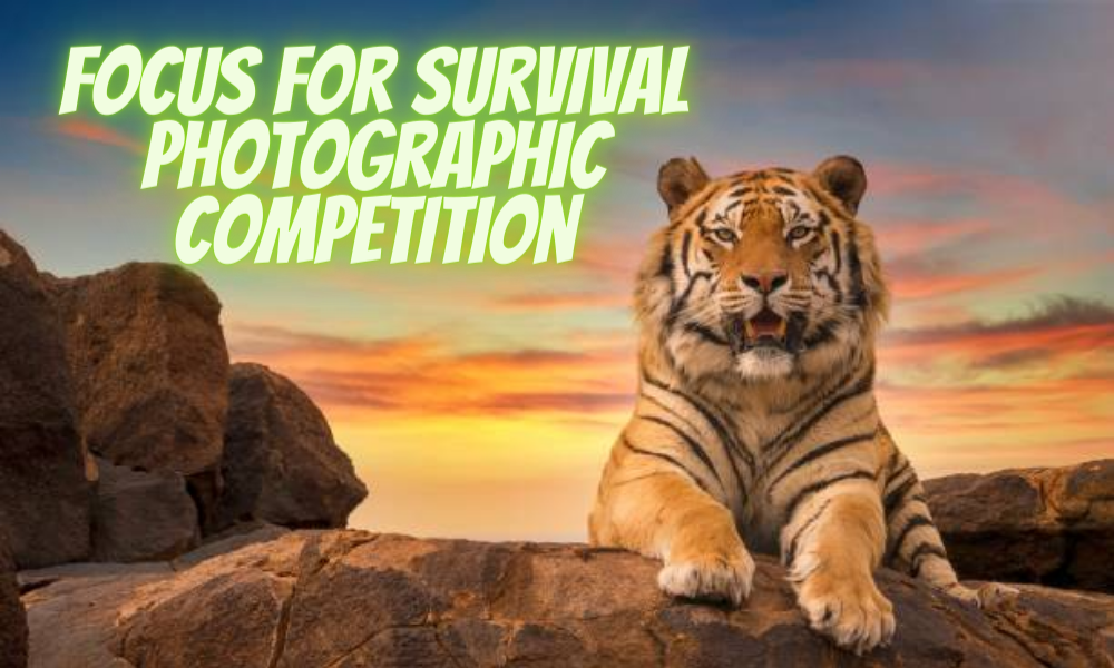 Focus for Survival Photographic Competition