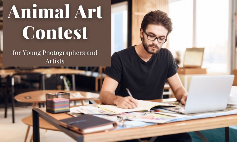 Animal Art Contest for Young Photographers and Artists
