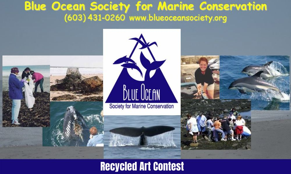 Blue Ocean Society Recycled Art Contest for Children and Adults