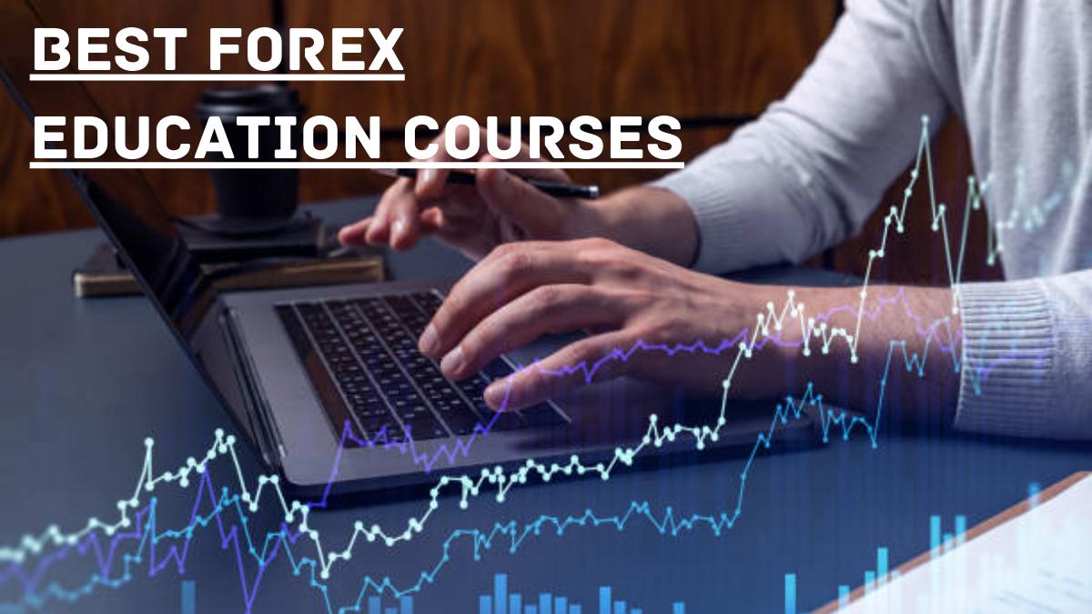Best Forex Education Courses