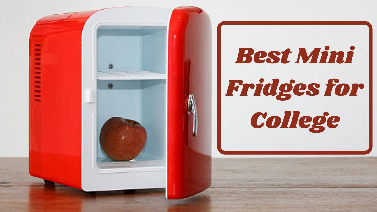 Best Mini Fridges for College