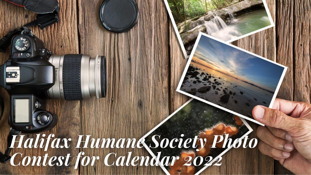 Halifax Humane Society Photo Contest for Calendar 2022