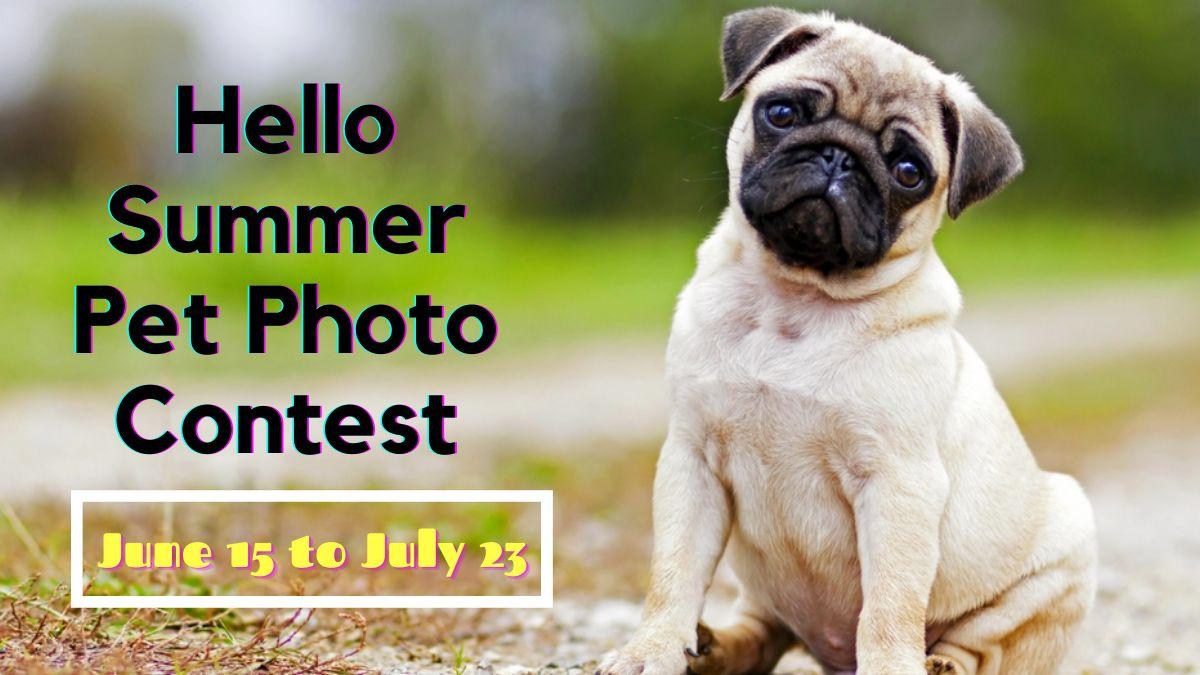 Hello Summer Pet Photo Contest