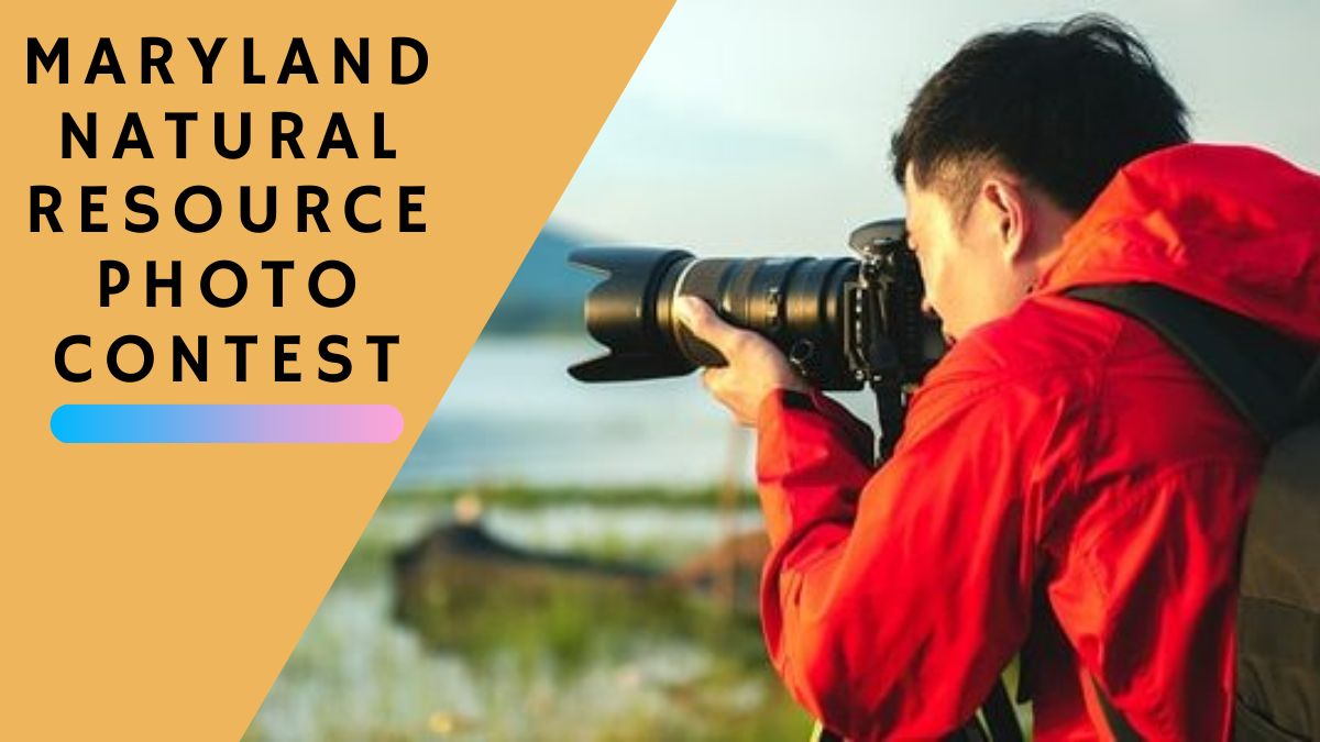Maryland Natural Resource Photo Contest