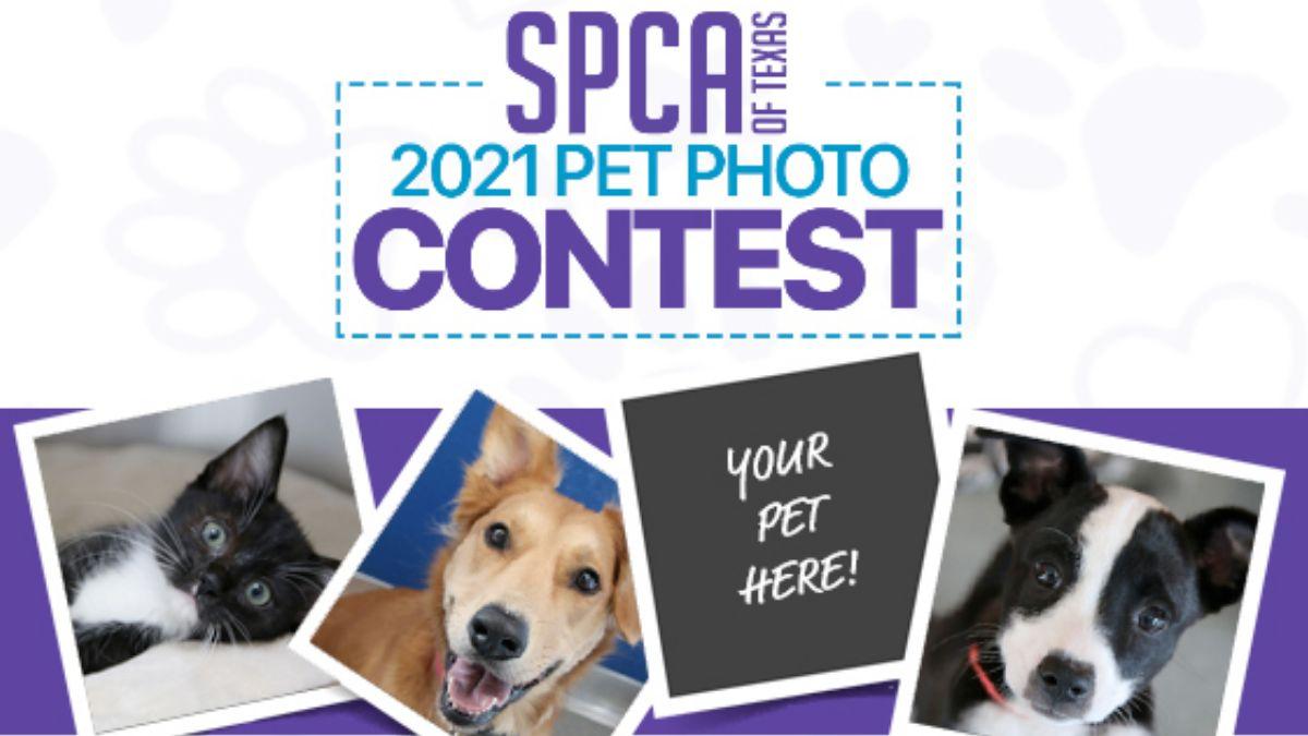 SPCA of Texas Pet Photo Calendar Contest