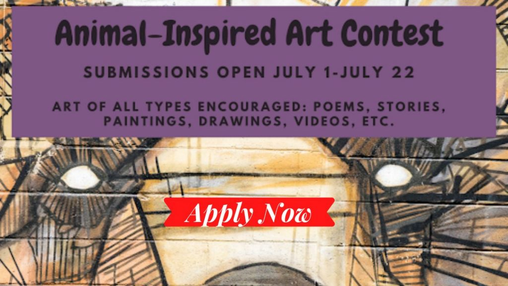 Animal Art Contest for Teen Summer Readers