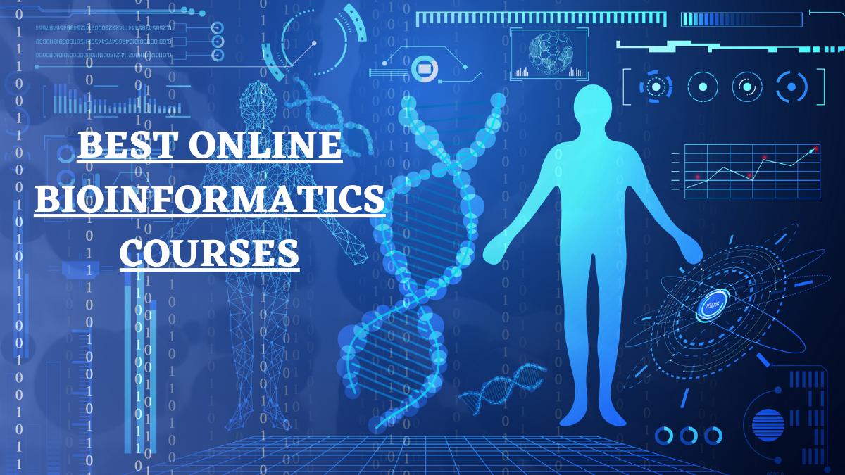 Best Online Bioinformatics Courses