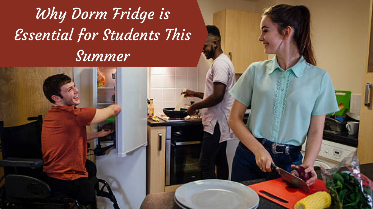Why Dorm Fridge is Essential for Students This Summer