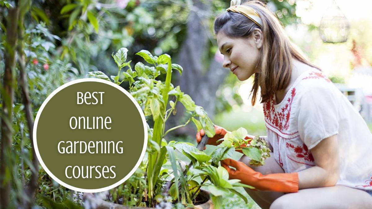 Best Online Gardening Courses