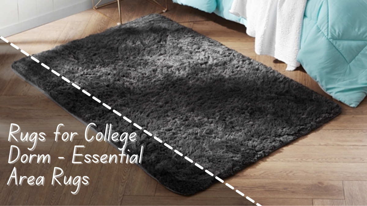 Rugs for College Dorm - Essential Area Rugs