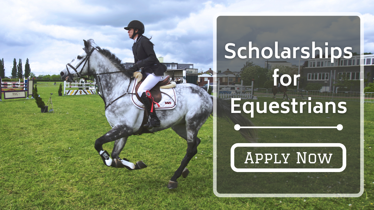 Scholarships for Equestrians