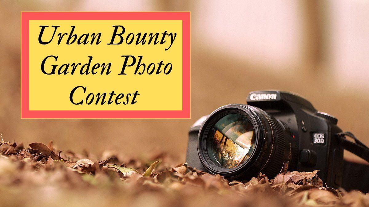 Urban Bounty Garden Photo Contest 2021
