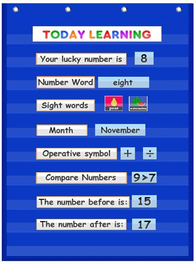 VNOM Standard Pocket Chart Clear