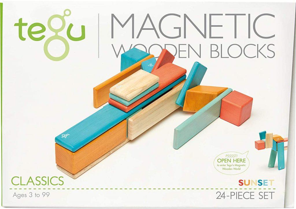 24 Piece Tegu Magnetic Wooden Block