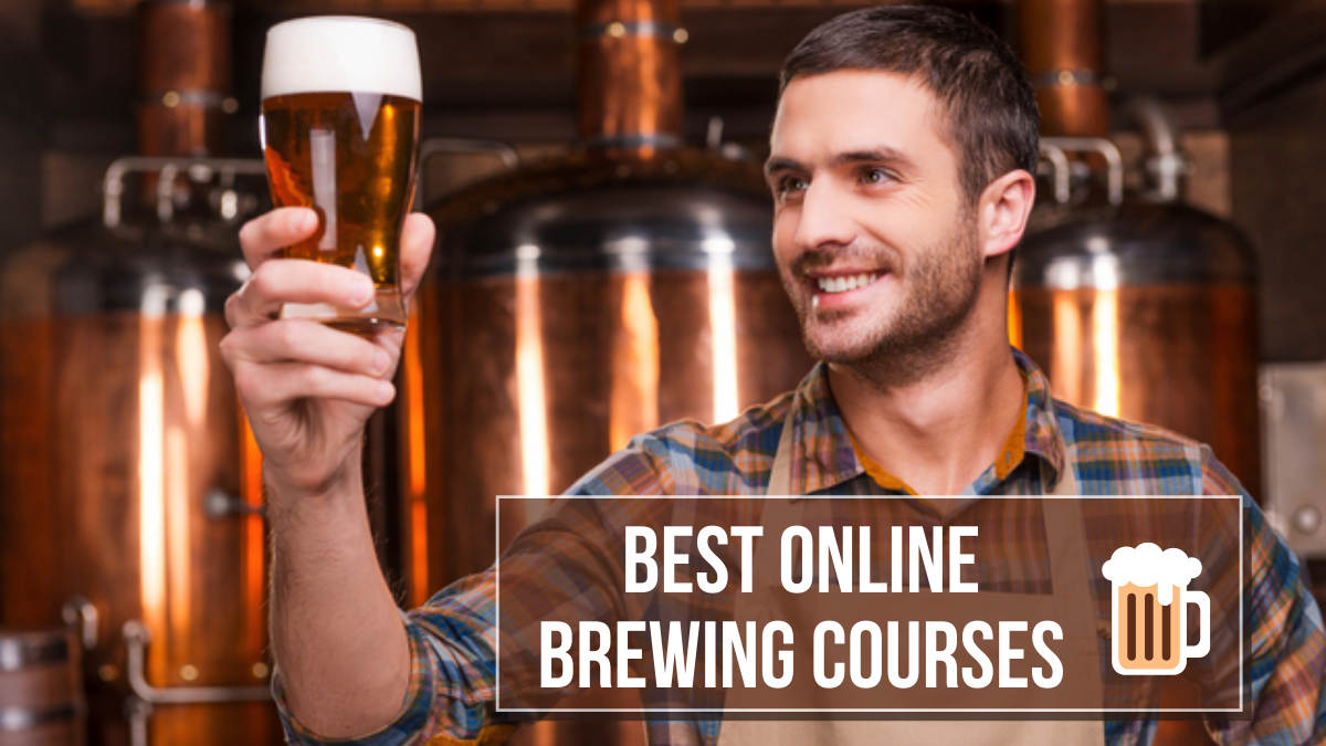 Best Online Brewing Courses