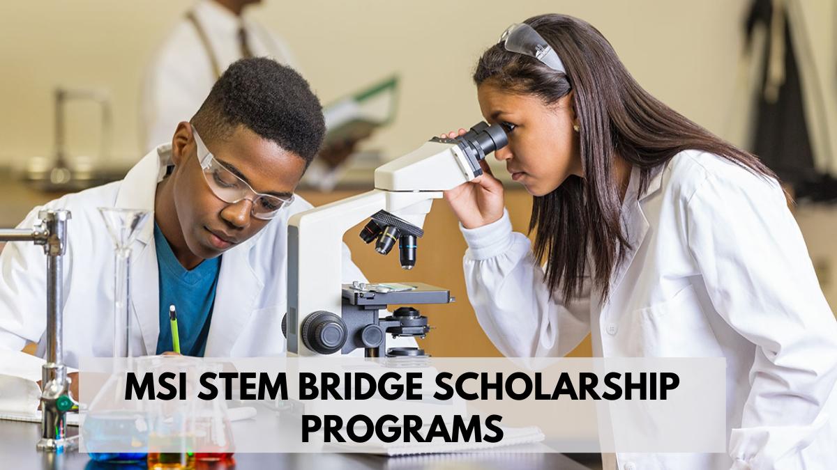 MSI STEM Bridge Scholarship Programs